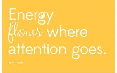 Energie blog Claudia Vesters