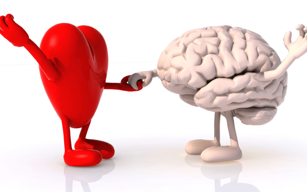 Je brein, de gelukshormonen en je gewoontes