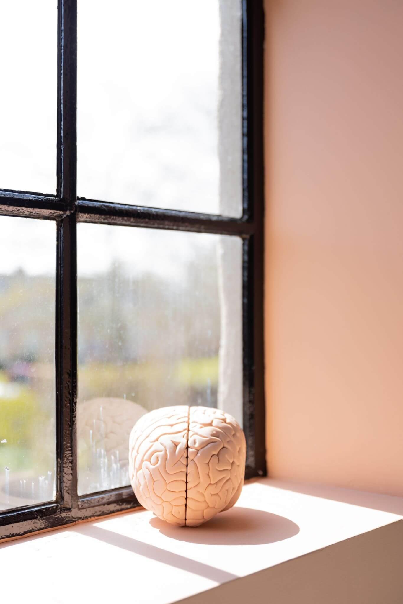 Claudia Vesters Hersenen Portrait Afvallen Slank Gezond Omega 3